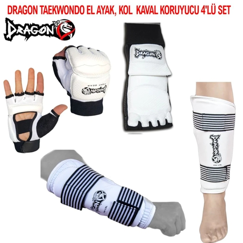 taekwondo-dragon-set